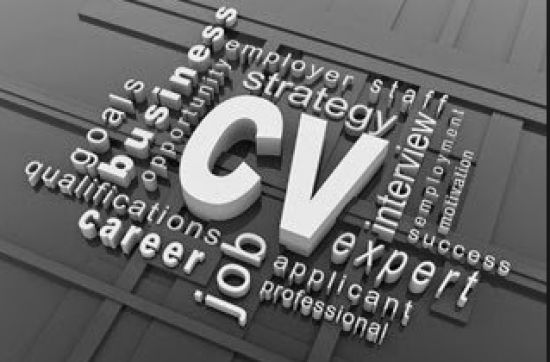 I will write and review your Cv for you