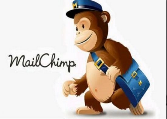 Get a professional email marketer and mail chimp for your campaign