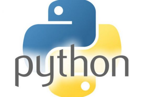i can help write python programming scripts projects