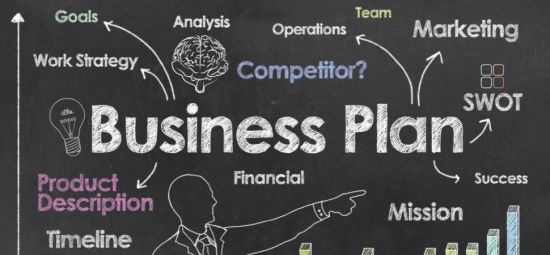 Get a unique and well-structured business plan with clear financial analysis of profit and loss to guide your decision