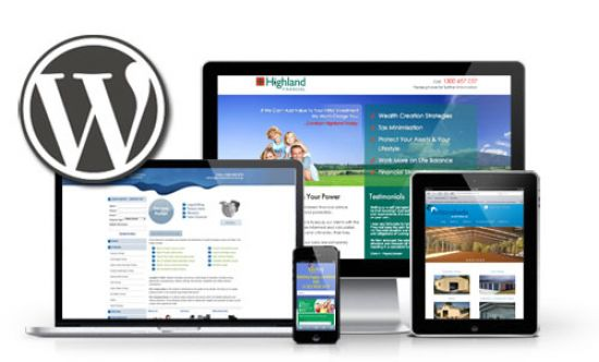 i will create a wordpress website or wordpress blog for you.