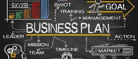 We will provide professional business plan and success strategy for businesses.