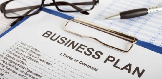 I will prepare Business Plans, Business Model Canvas, and Revenue Models.