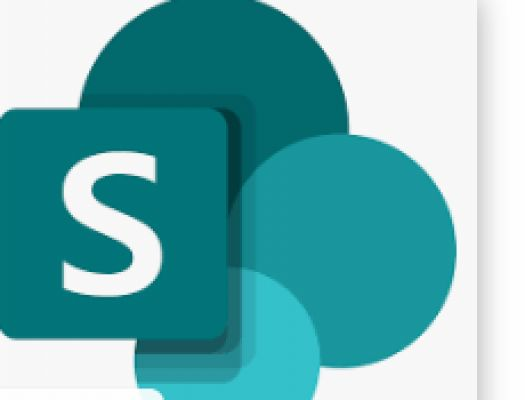 I will provide sharepoint work support