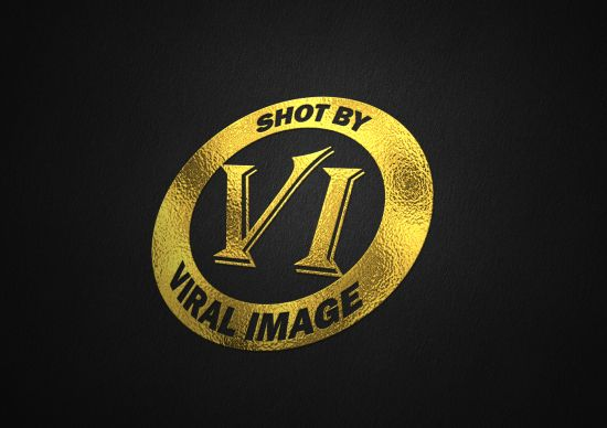 I will give you professional extraordinary Logo Designs.